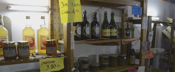 alimentation-raisonnee grosse patate