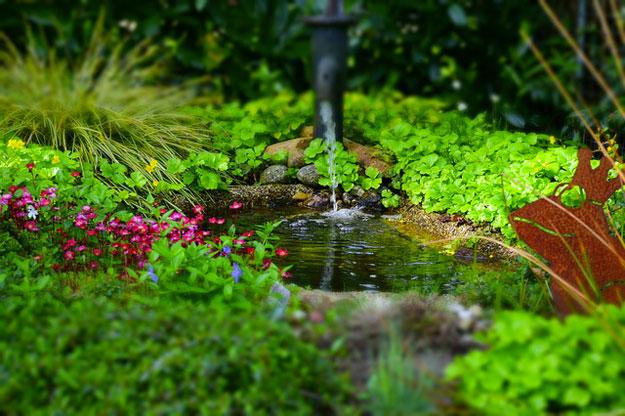 eautarcie-jardin-eaux-uses-plantes