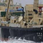 Pêche - Les ravages des navires usines (video)