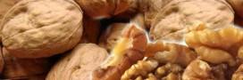 Les bienfaits des noix contre le diabète
