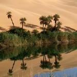 Sable et poussières : le Sahara nourrit l'Amazonie !