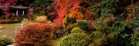 Travailler son sol en automne pour préparer l'hiver
