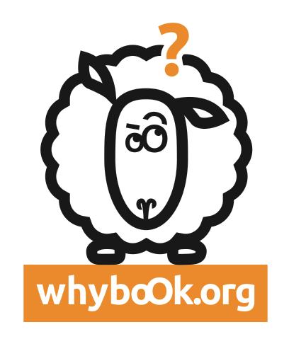 whyboOk-grands-decideurs-questions-01