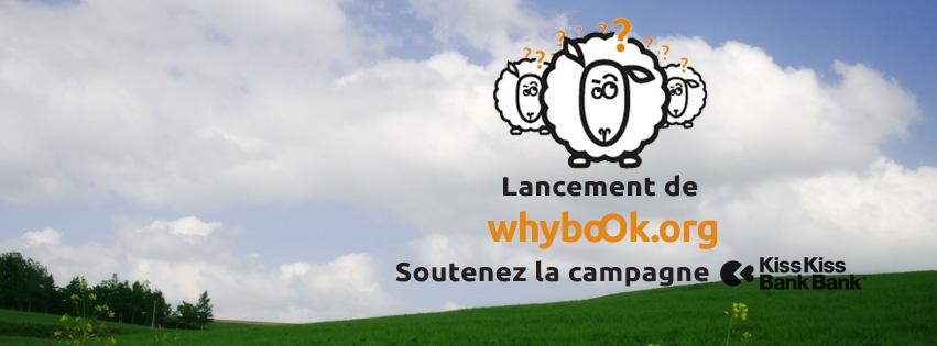 whyboOk-grands-decideurs-questions-02