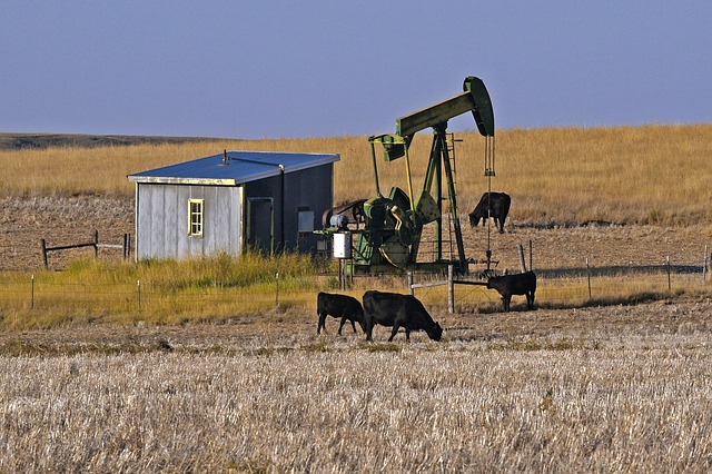 Station pompage pétrole