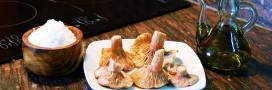 Recette de fête: rôti végétal de Noël à la farce et sa sauce