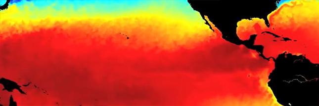 Climat : El Niño est de retour après 5 ans d'absence
