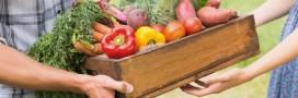 La micro-ferme, modèle agricole pour le 21ème siècle?