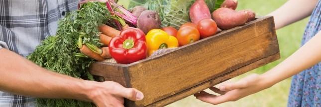 La micro-ferme, modèle agricole pour le 21ème siècle ?