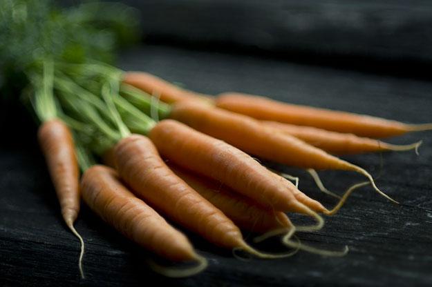 panier-amap-fevrier-carottes