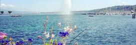 Le lac Léman menacé par une nouvelle espèce invasive !