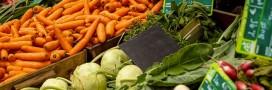 Retrouvez pour mars les légumes de saison, les fruits, les fromages, la viande et le poisson