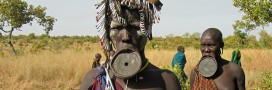 Land grabbing: ces États qui mettent la main sur les terres des autres