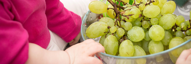 L'avenir optimiste de l'alimentation dans le monde - 17 faits positifs