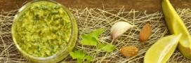 Recette bio: crème onctueuse de persil et avocat