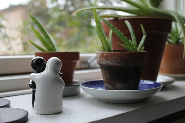 aloe-vera-plante-bien-être-médecine-naturelle-miracle