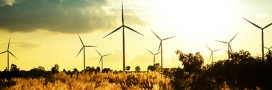 Vents faibles: des éoliennes de plus en plus intelligentes