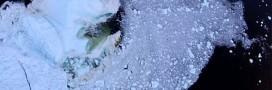 Un iceberg meurt, filmé par un drone [vidéo]