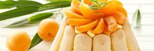 Dessert d'été : charlotte aux abricots et ricotta[recette bio]