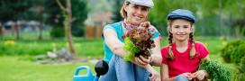 Des légumes gratuits en ville grâce aux Incroyables Comestibles