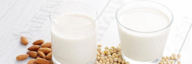 Les laits végétaux : des alternatives gourmandes aux laits animaux