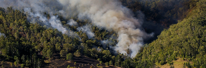incendies-feux-foret-canadair-ban