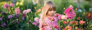 Jardinage : 5 manières naturelles de remédier à un sol pauvre