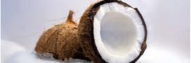 Les bienfaits insoupçonnés du lait de coco