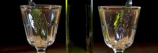 20 sur Vins : absinthe, gentiane et petite centaurée