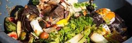20 conseils essentiels pour réduire le gaspillage de vos aliments