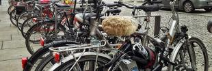 Les subventions à l'achat de vélo à assistance électrique