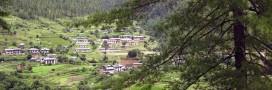 Le Bhoutan bientôt le pays le plus bio du monde?