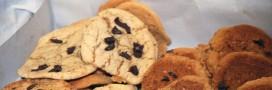 Après les fruits et légumes moches, découvrez les biscuits moches!