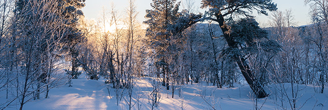 Laponie, Laponie suédoise suède hiver
