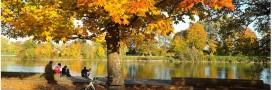 Les sorties vertes du mois d'octobre