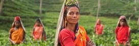 Les femmes sont les premières victimes du changement climatique