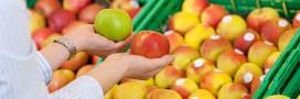 Loi sur le gaspillage alimentaire : qui peut récupérer les invendus ?
