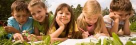 Éco-école: le développement durable, ça s'apprend