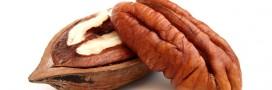 La noix de pécan, riche en gourmandise et en antioxydants