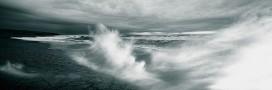 Plus de 20% de l'espace maritime français désormais protégé