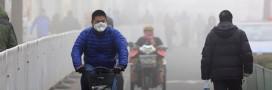 Contre la pollution de l'air, des étudiants inventent un sac à plantes