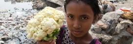 Les tanneries toxiques d'Hazaribagh : photos choc