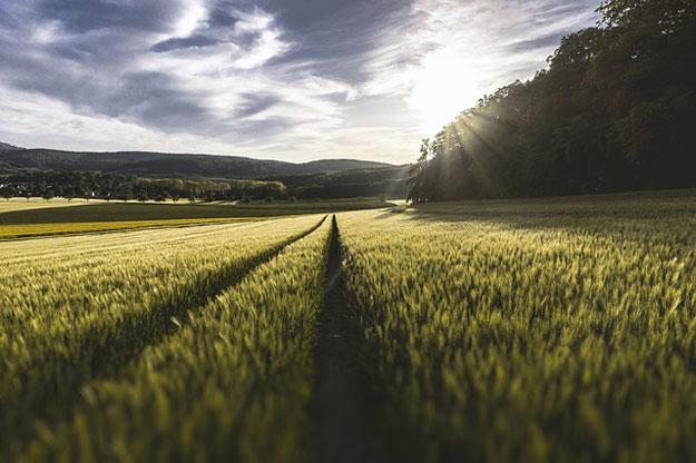 agriculture-bio-planete