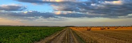 Pour les scientifiques, l'agriculture biologique peut nourrir 9 milliards d'habitants en 2050