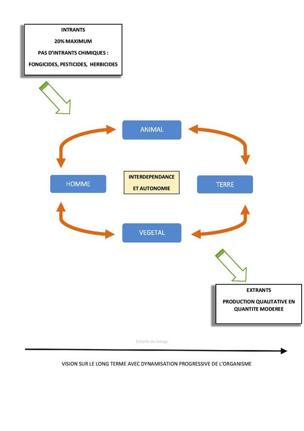 biodynamie-schema