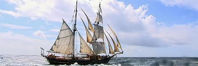 Cargo à voile : le renouveau du transport de marchandises