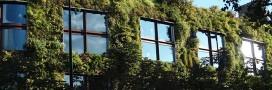 Agriculture urbaine et biodéchets: 100 nouveaux ha de vert à Paris
