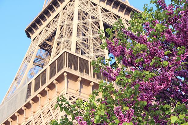 Paris agriculture urbaine