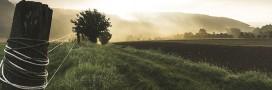 Biodynamique, raisonnée… Le point sur les différentes formes d'agriculture