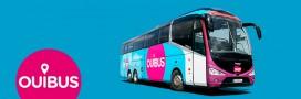 Les 'bus Macron': bon plan pour les consommateurs et l'environnement